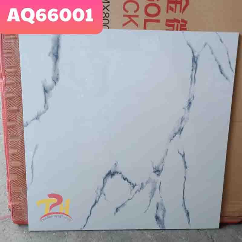 TQ6060 AQ66001