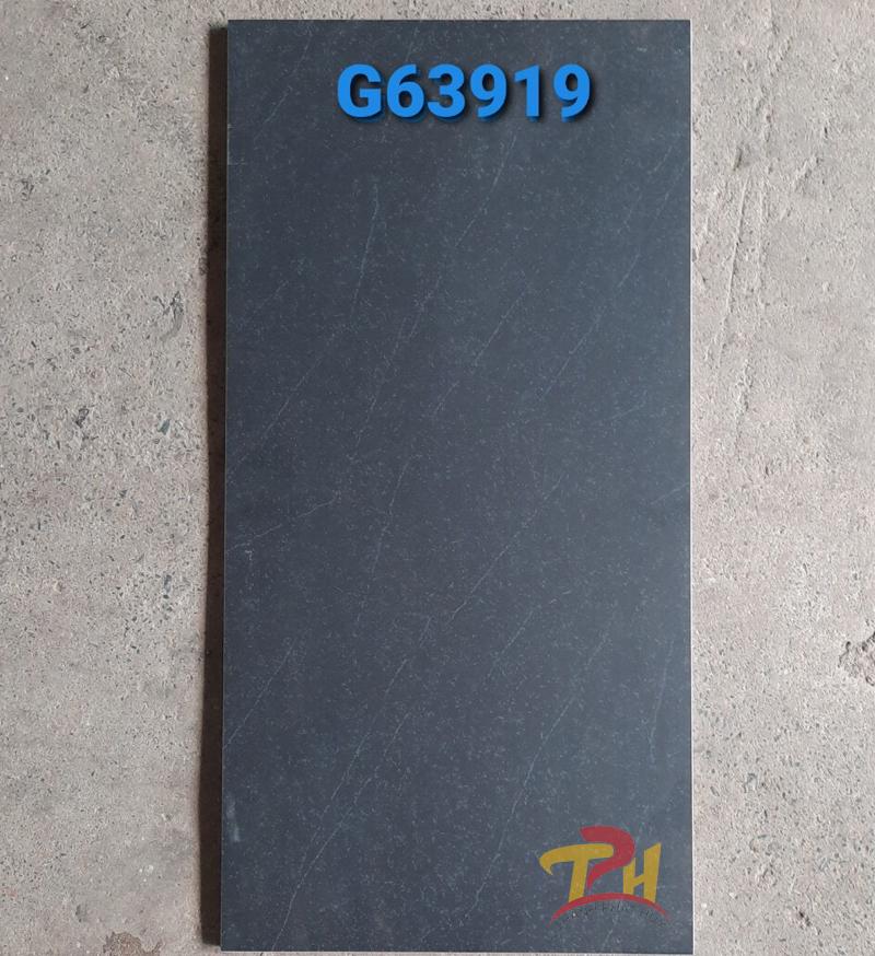 gach taicera g36919