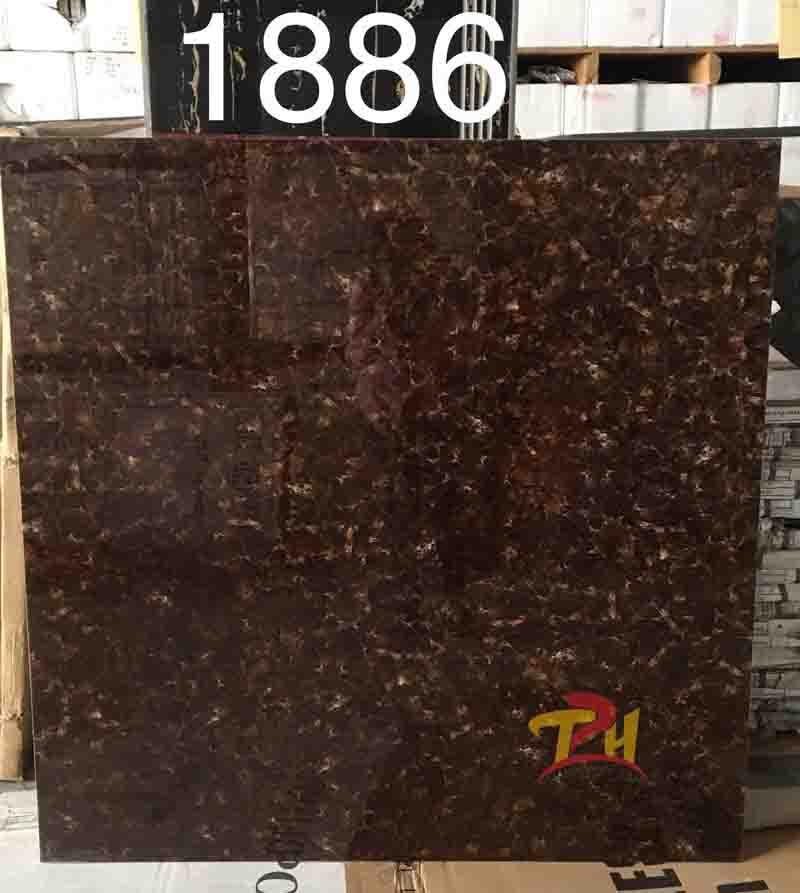 gachTQ 8080 1886