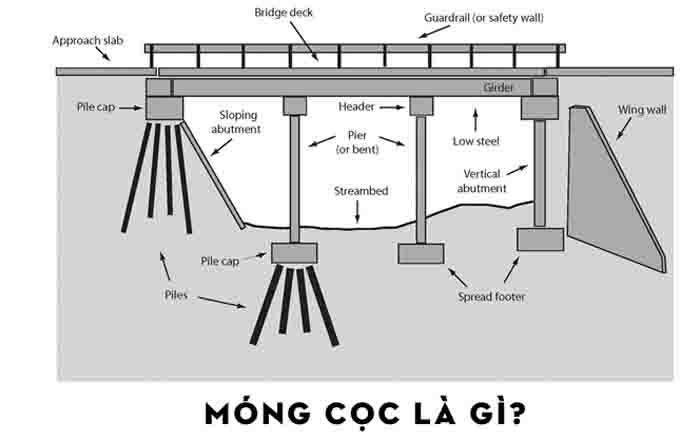 mong coc