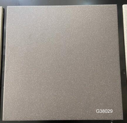 Taicera-G38029-3