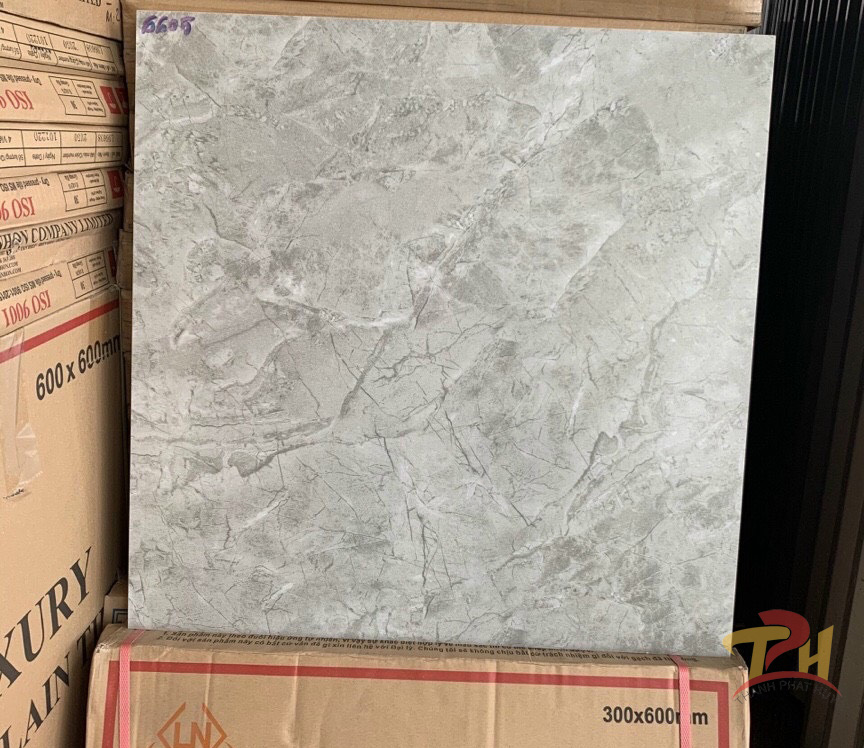 gach 60x60 KIS 6605